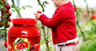 رب گوجه فرنگی طبیعی چی چی لاس