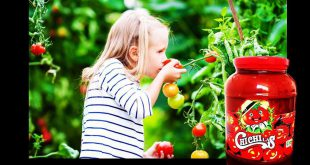 خرید رب گوجه فرنگی صنعتی چی چی لاس