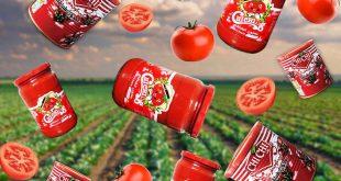 رب گوجه فرنگی درجه یک با بریکس 27