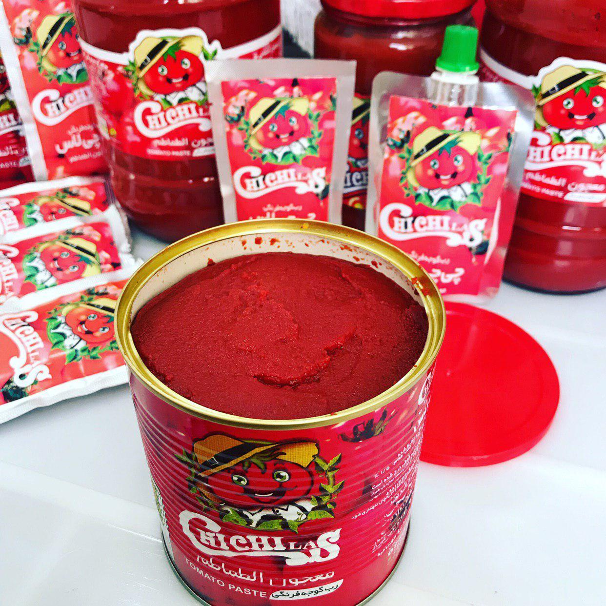 تولید رب گوجه فرنگی مرغوب صادراتی